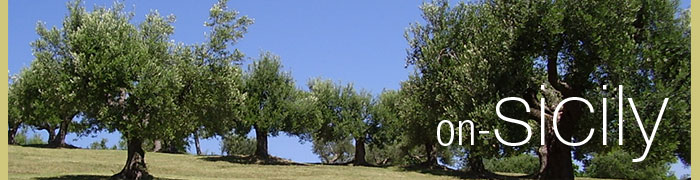 on-Sicily: banner - olive trees in Sicily